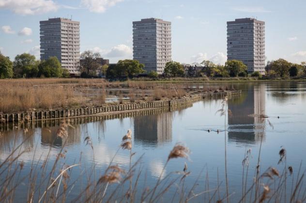 Водохранилище Вудберри в Лондоне: прошлое и настоящее
